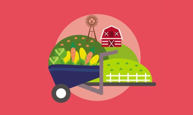 Овощные заготовки